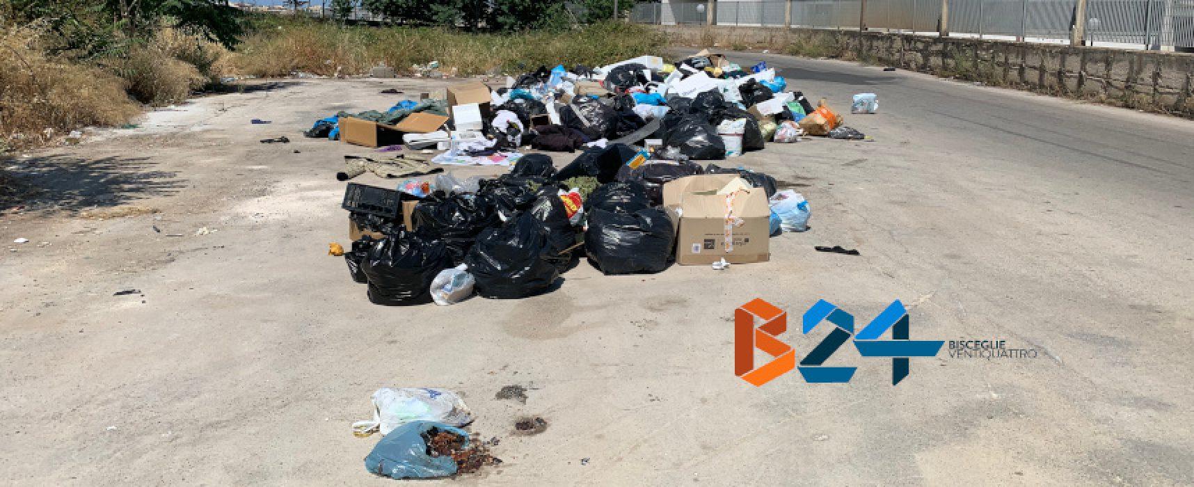 Abbandono illegale di rifiuti, un fenomeno che persiste /FOTO
