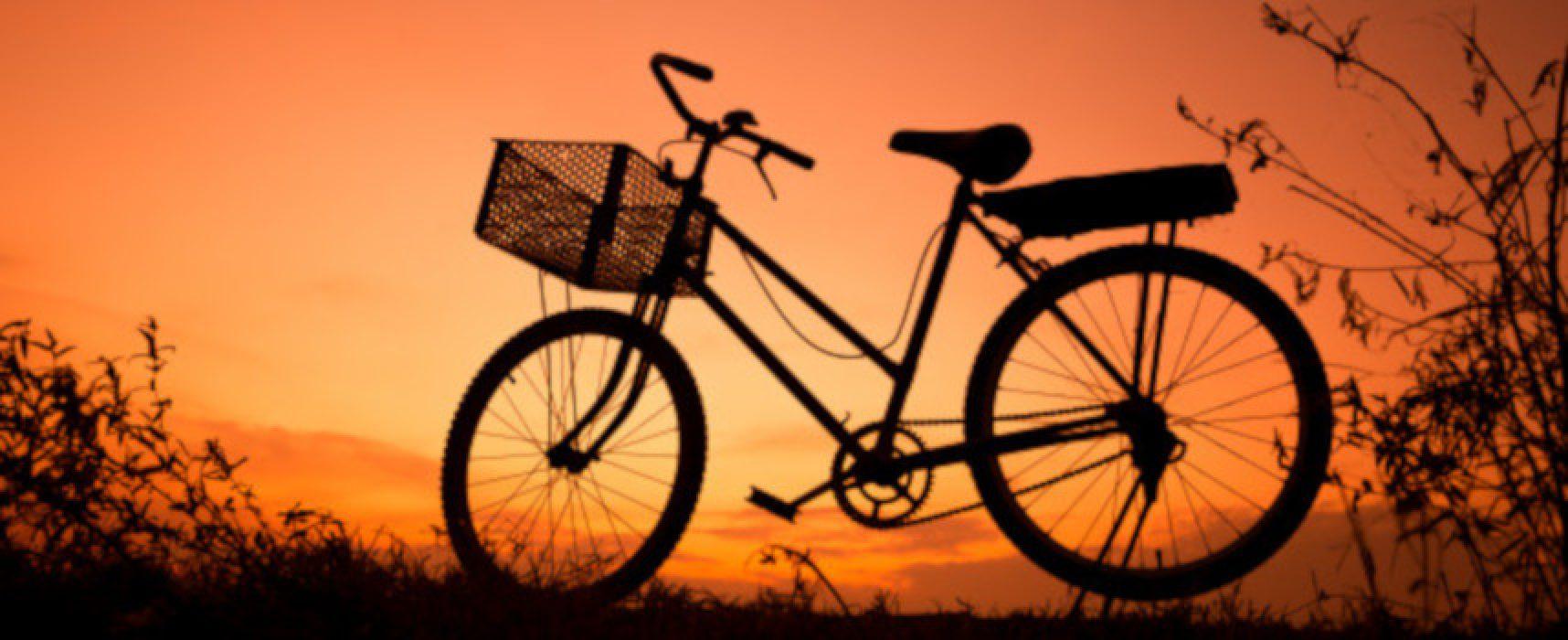 Summer Night Bike, arriva la terza e ultima passeggiata in bici sotto le stelle