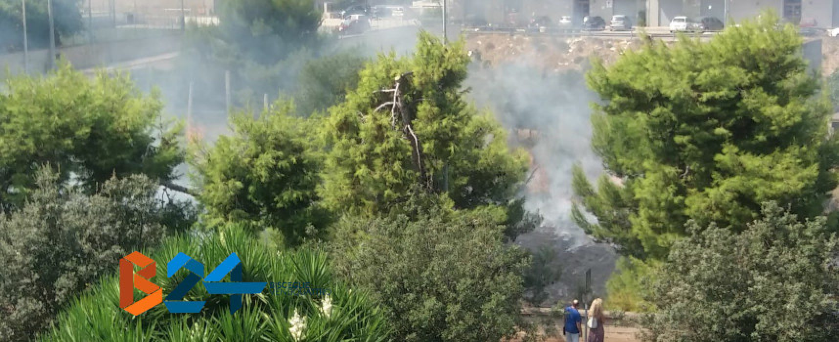 Incendio in un terreno in via Cala dell'Arciprete /VIDEO