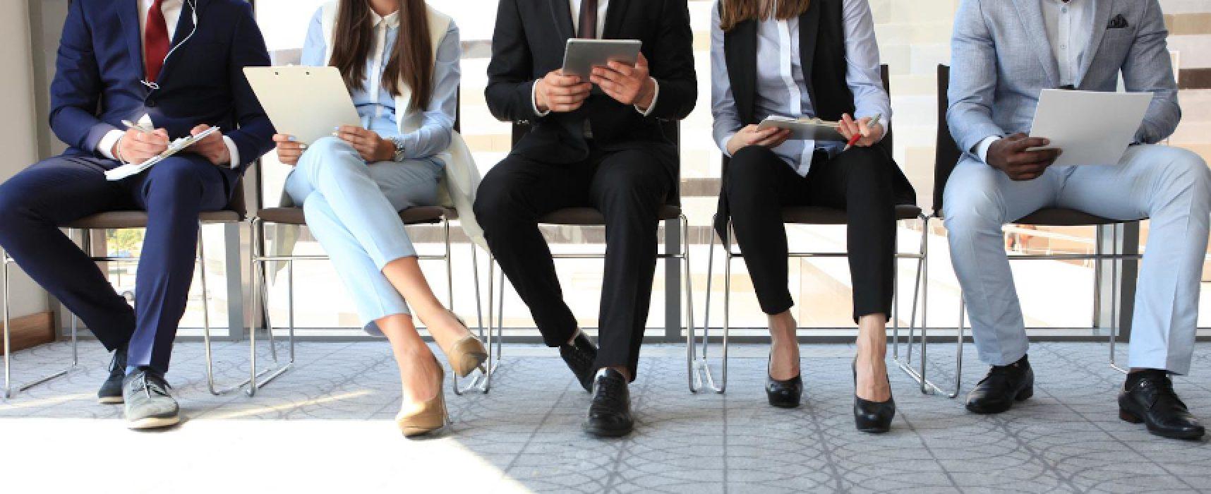 Offerte di lavoro a Bisceglie / ECCO quali sono e come candidarsi