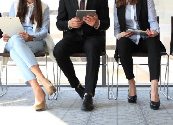 Lavoro a Bisceglie, tutte le figure professionali richieste da aziende e privati