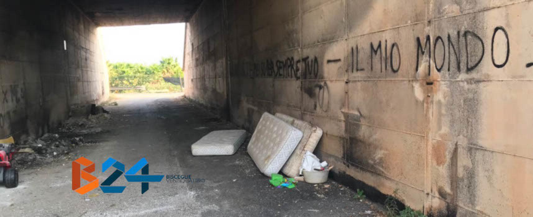 Complanare di via Ruvo ancora una volta sommersa dai rifiuti /FOTO
