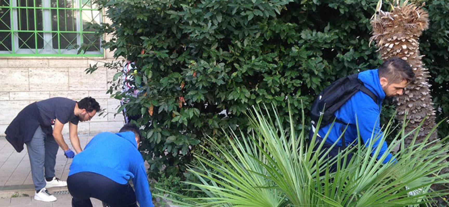 """Giovani volontari biscegliesi ripuliscono Parco """"Unità d'Italia"""" / FOTO"""