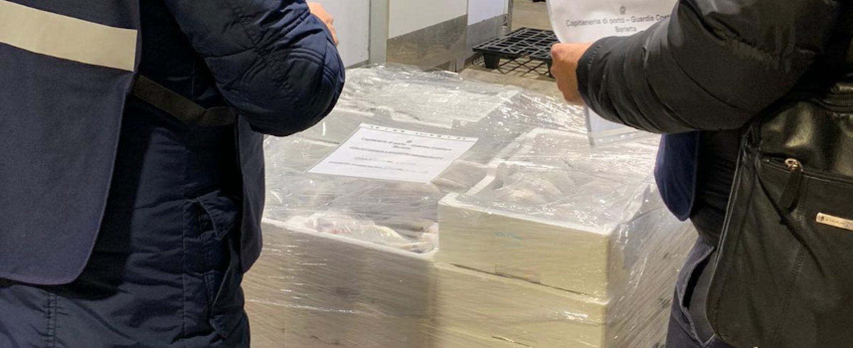 """Operazione """"Mercato globale"""", sequestrata una tonnellata di prodotto ittico"""