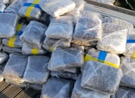 Armi e droga, duro colpo ad organizzazione italo-albanese: arresti anche a Bisceglie / VIDEO