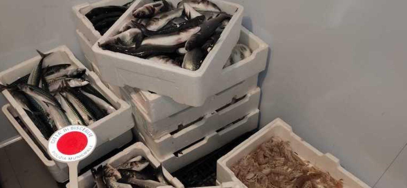 Commercio abusivo, donati in beneficenza i prodotti alimentari sequestrati