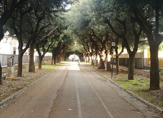 Sabato 2 maggio riapre il cimitero comunale: accessi contingentati e controllati