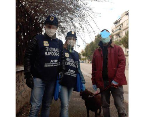 Azienda biscegliese dona mascherine e visiere a Nucleo Guardie Zoofile Bat / FOTO