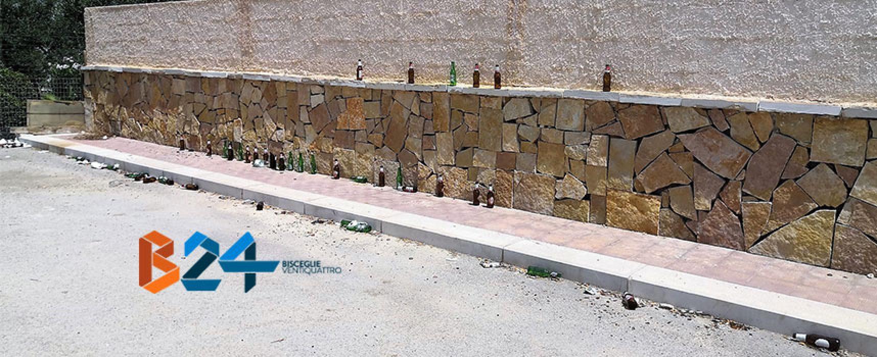 Lettore denuncia situazione di degrado in Carrara il Vuolo / FOTO