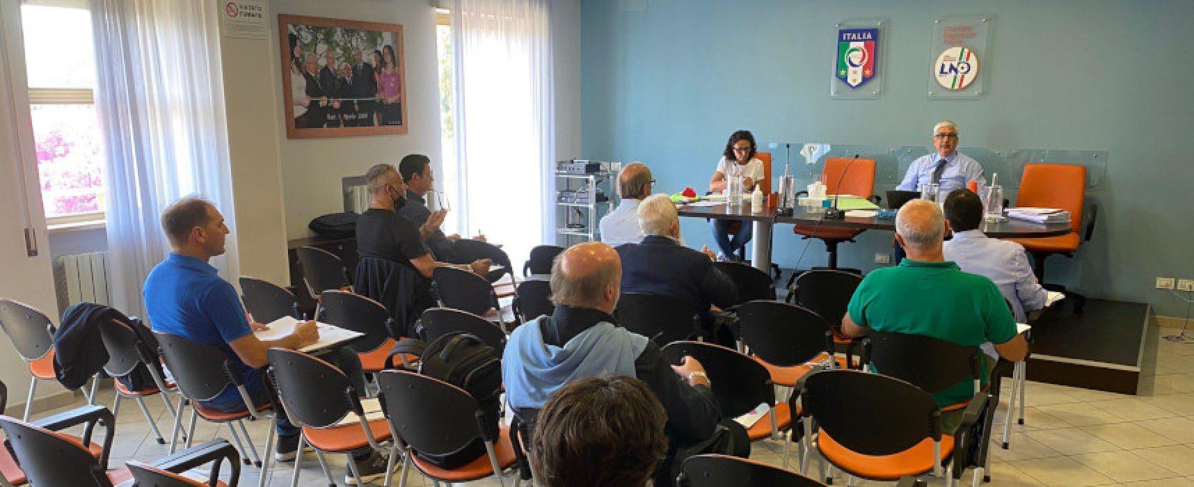 Promozioni e retrocessioni: le volontà della Lnd Puglia per i campionati regionali