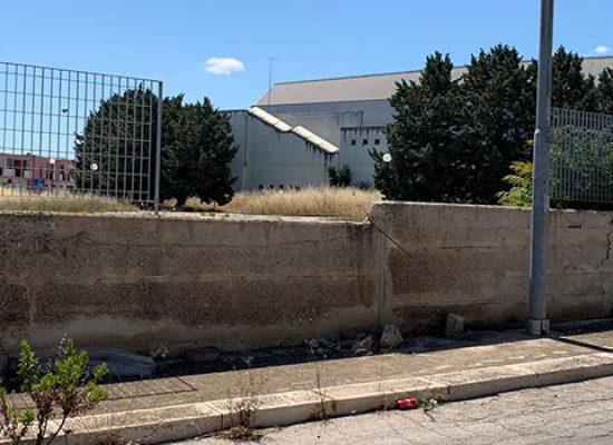 """Mauro Sasso su PalaDolmen: """"Sconcertato, struttura abbandonata a se stessa"""" / FOTO"""