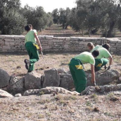 Scout impegnati in attività di diserbamento e pulizia Dolmen Frisari e La Chianca / FOTO