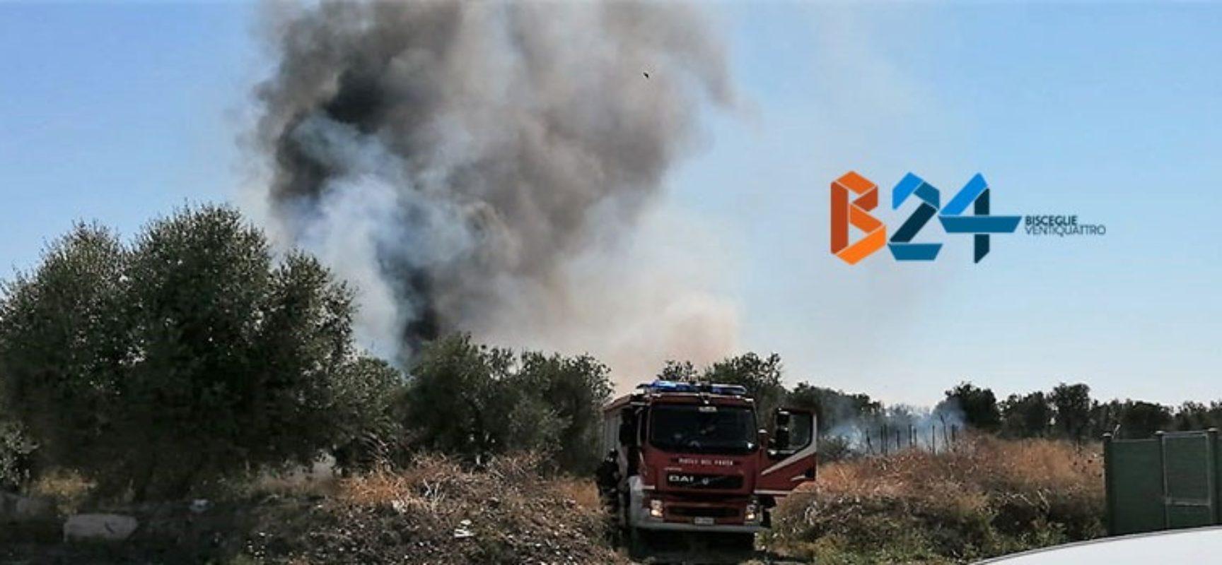 Incendio in via Lama di Macina, intervengono i Vigili del Fuoco
