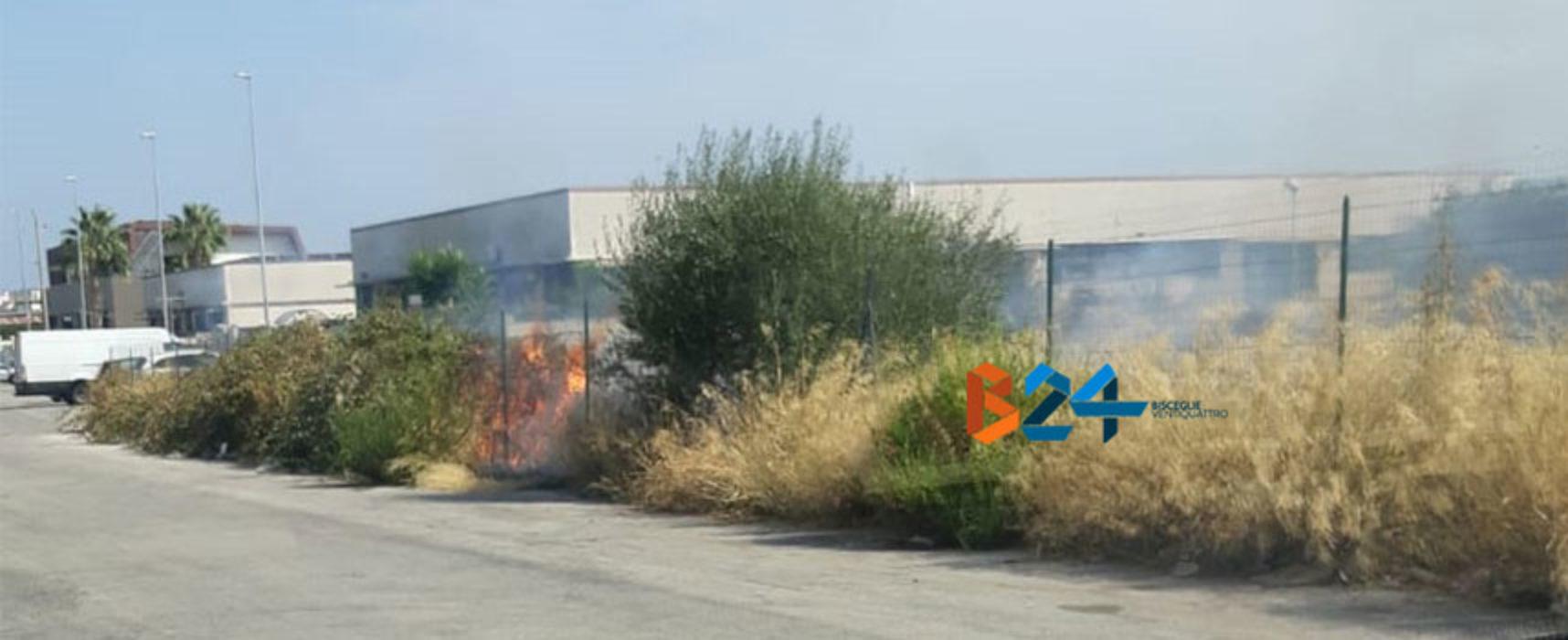 A fuoco appezzamento di terreno in zona artigianale