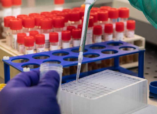 Coronavirus: dati Bat non accennano a calare, 206 nuovi casi e 15 decessi