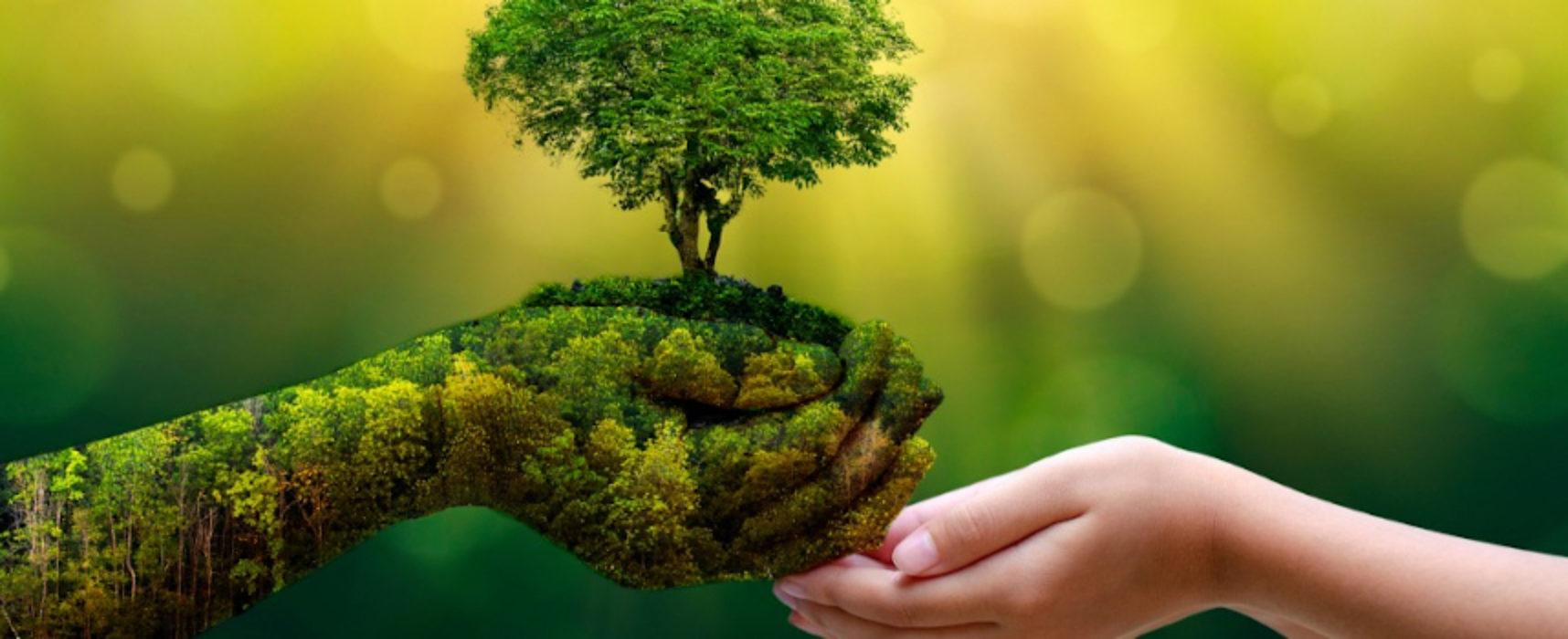 """Associazione 21, ultimo incontro """"Common Ground"""": riflessione sull'ambiente"""