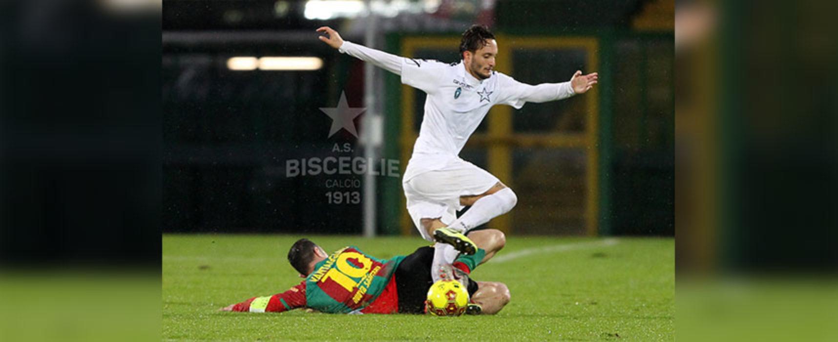 Bisceglie Calcio, con la Ternana nuovo stop esterno