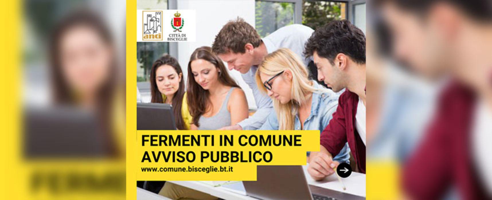 """Comune approva e pubblica bando per giovani, Angarano: """"Opportunità per nostra comunità"""""""