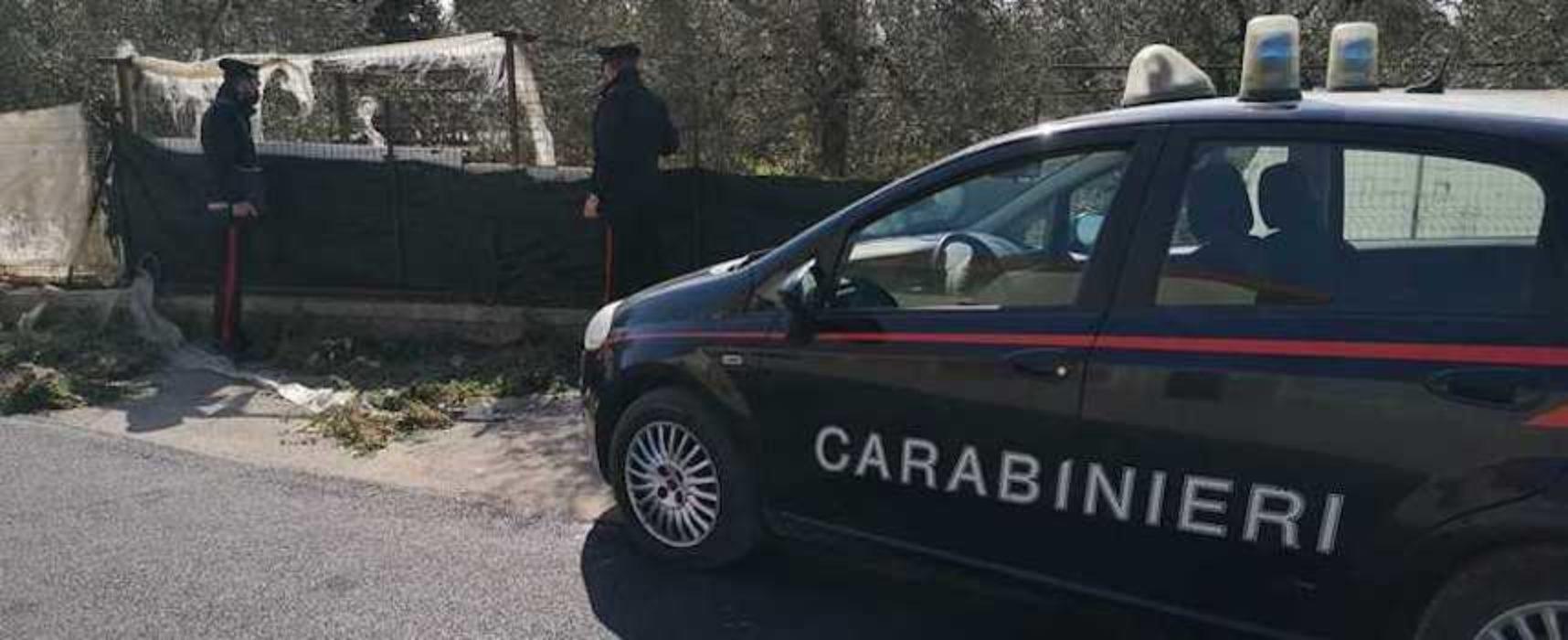 Breve inseguimento in via Ruvo: carabinieri arrestano due ragazzi per spaccio