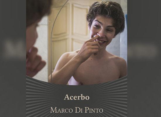 """""""Acerbo"""": il biscegliese Marco Di Pinto presenta il suo nuovo romanzo"""