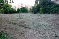 Manutenzione verde giardino dei giusti 4